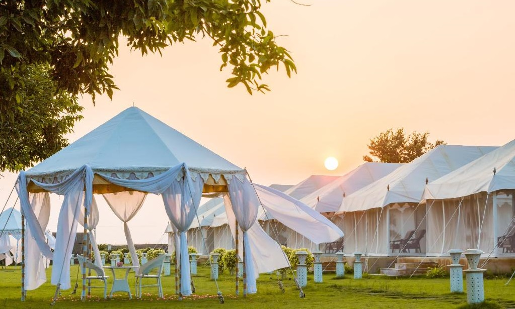 Life Is A Picnic: Tents for sale